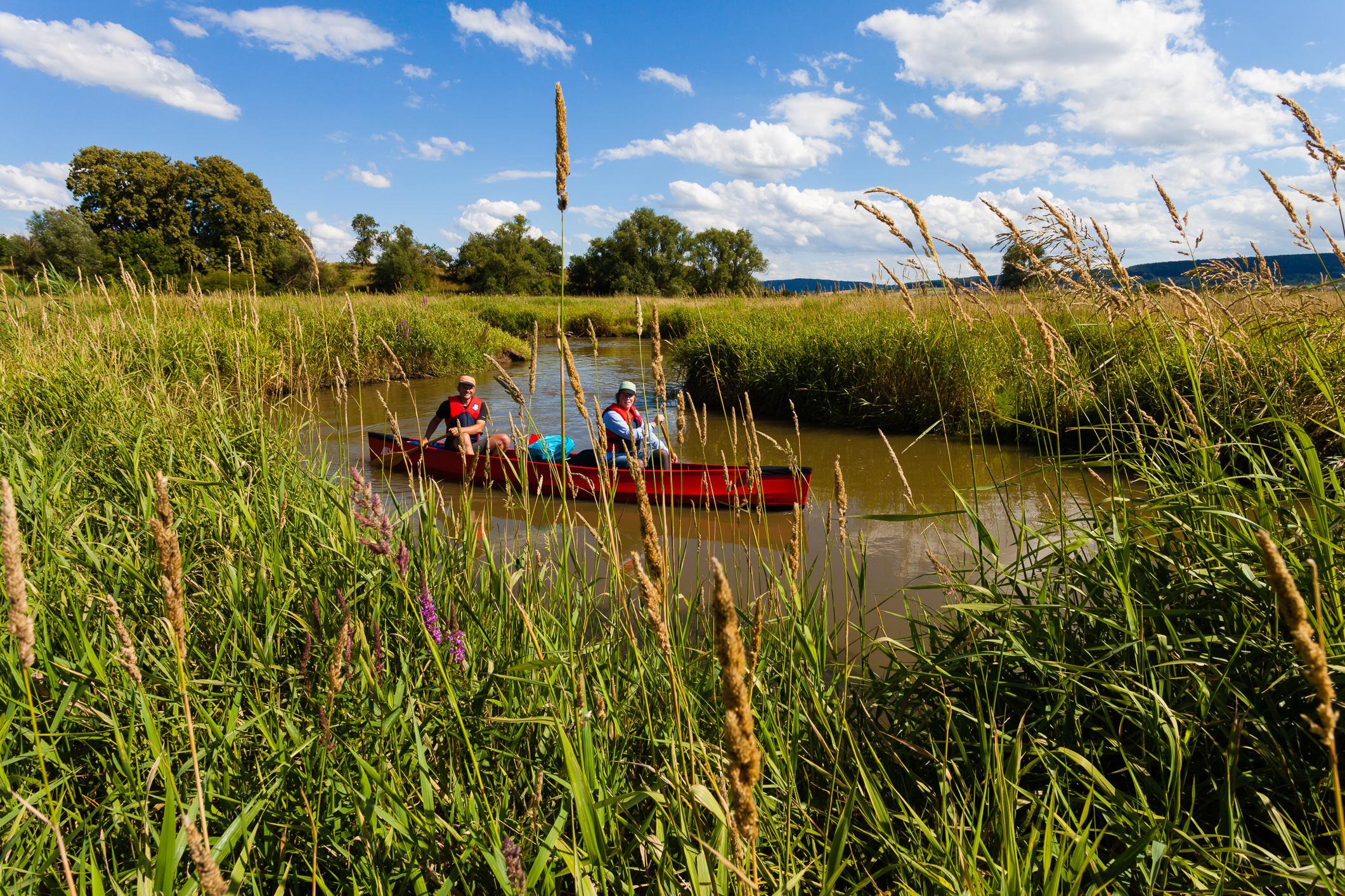 Renaturierter Flusslauf bei Trommetsheim